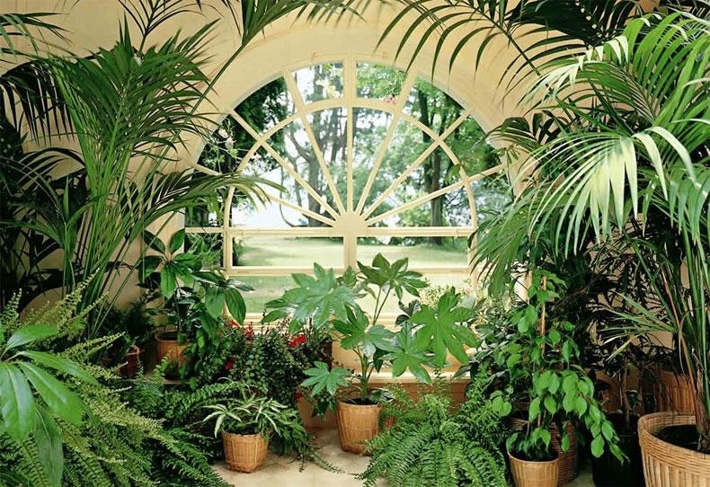 Варианты дизайна зимнего сада
