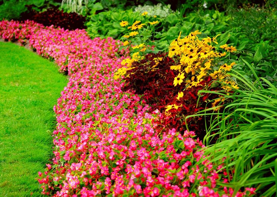 Оформление цветников